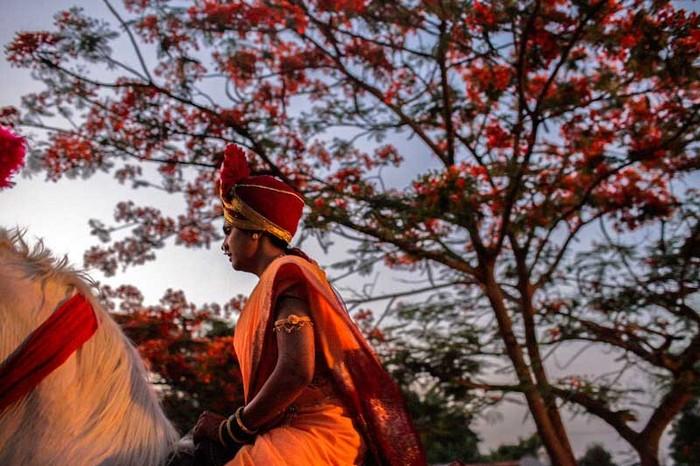 Horseback Stories, Pune