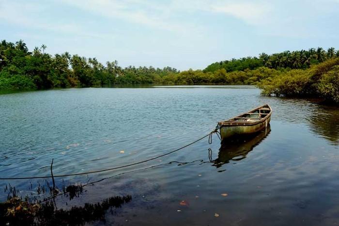 Vaayu Backwaters