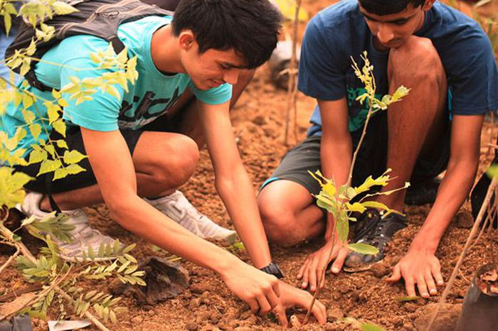 A Drive Is Planting 10 Lakh Trees In Delhi-NCR, Here's How You Can Help