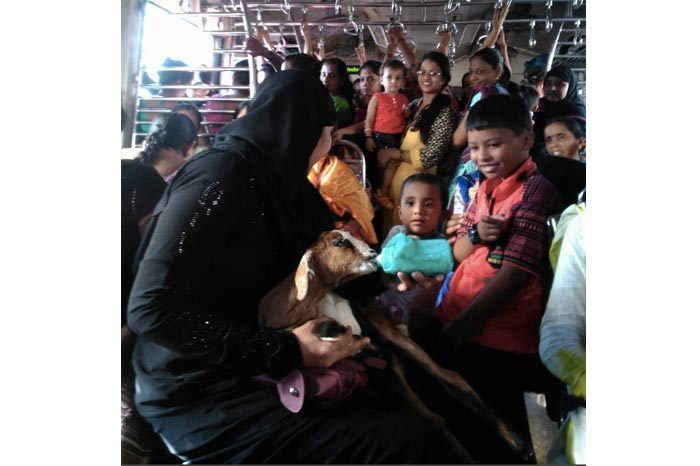 """""""Children look on curiously at a goat baby being fed milk from a bottle by a lady who volunteered to do it. The kid is 15 days old and away from it's mother. It was being taken to Govandi by a group of girls in the Mumbai local train."""""""