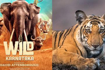 Wild Karnataka: India's First Blue Chip Nature Documentary Captures the Spirit of Wilderness