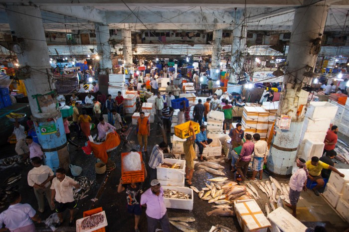 Mnaish Fish Market in the morning. Photographed by Rashi Arora for Homegrown