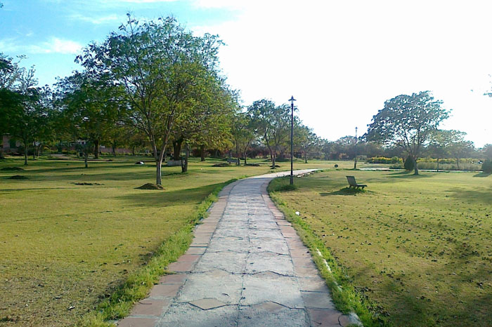 Central Park. (Image source: budgetindianvacations.wordpress.com)