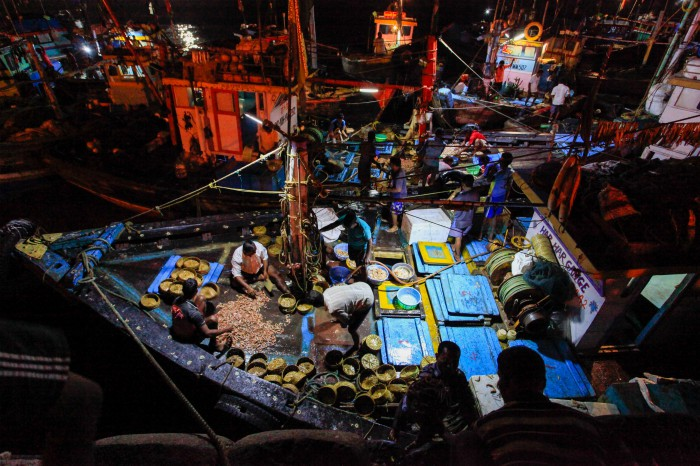 Boats arrive at the docks with the Bombay duck. Photographed by Rashi Arora for Homegrown